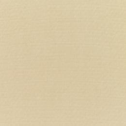 "Sunbrella® Elements Upholstery 54"" Canvas Antique Beige 5422-0000"